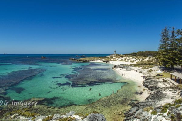Rottnest Boating Activities